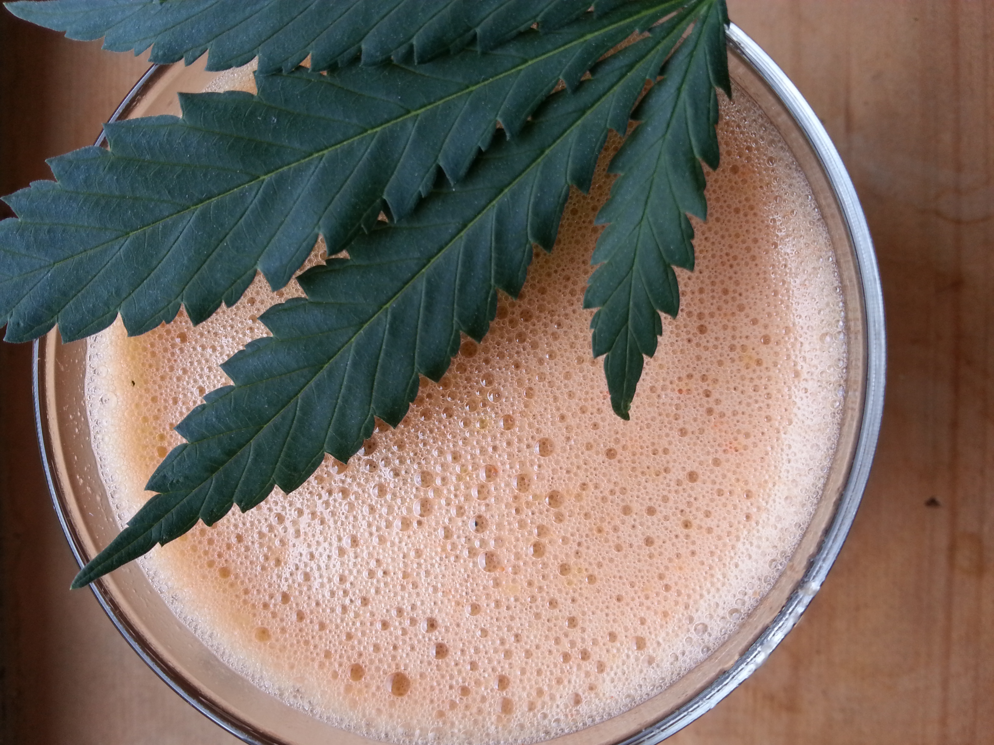Raw & Vegan: The Power Of Juicing Cannabis
